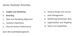 Senior Marketier Priorities
