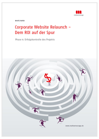 White Paper Website Relaunch Erfolgskontrolle